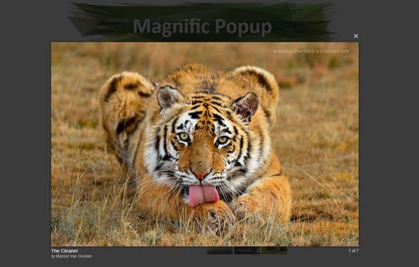 JavaScript Plugin Magnific PopUp