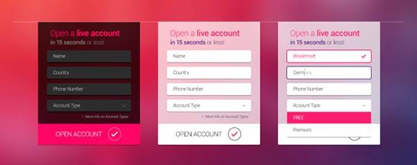 PSD Gratis Web Form