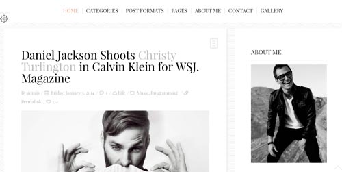 Temas WordPress para blogs: Buzzblog