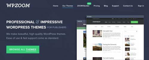 Mercado online para temas WordPress: WP Zoom