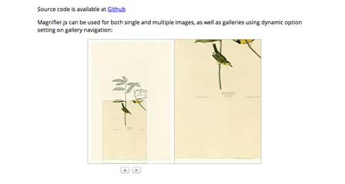 Javascript plugin para manipular imágenes: Magnifier.js
