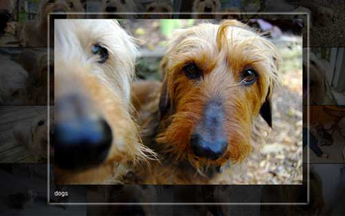 Plugin JQuery para añadir zoom: JPhotogrid
