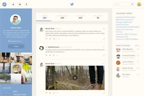 Ejemplos de rediseño de Twitter: Twitter Profile