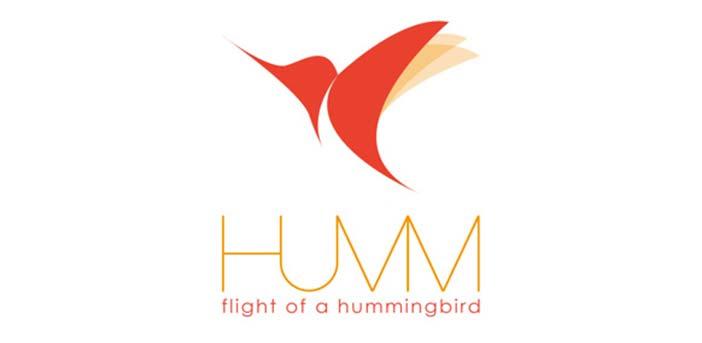 Diseño de logos con síntesis de aves: Hummingbird Logo