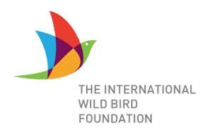 Diseño de logos con síntesis de aves:  TIWBF