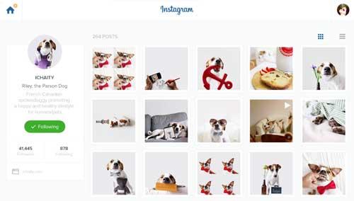Conceptos de página con estilo flat web design: Instagram Redesign