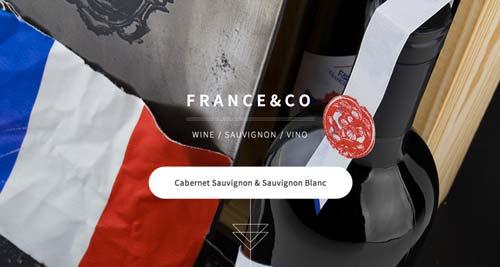 Ejemplos de paginas web de bodegas de vino: France & Co