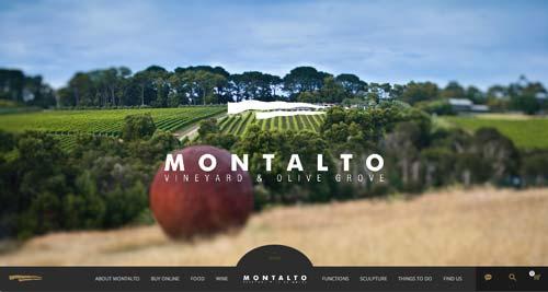 Ejemplos de paginas web de bodegas de vino: