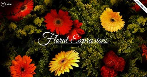 Ejemplos de paginas web que hacen buen uso de imágenes en gran tamaño: Arcadia Agro