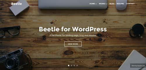 Temas WordPress adaptativos para portafolios online: Beetle