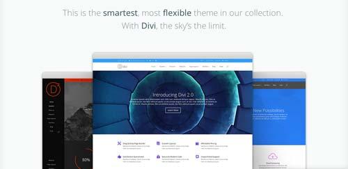 Temas WordPress flexibles para crear y personalizar tu sitio desde cero: Divi