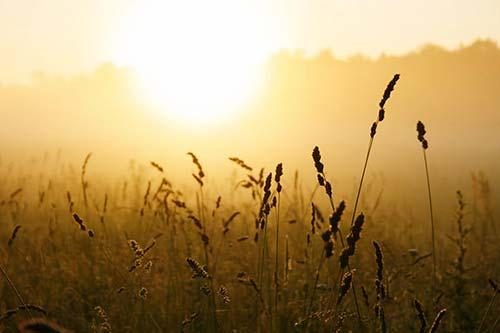 Acciones Photoshop gratuitas para añadir diversos efectos a tus fotos: Sunlight Photoshop Actions