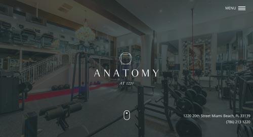 Ejemplos de paginas web que hacen uso del parallax scrolling: Anatomy at 1220