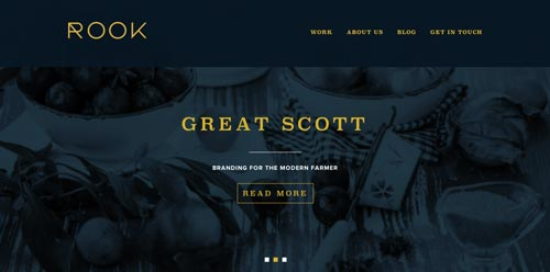 Ejemplos de paginas web que hacen uso de tipografía serif: Rook