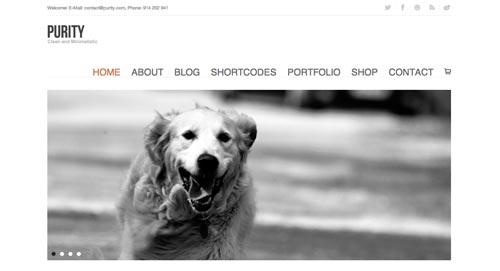 temas-wordpress-diseno-minimalista-purity