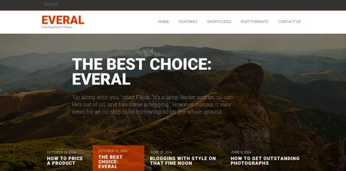 Temas WordPress gratuitos que siguen las tendencias de diseño actuales: Everal
