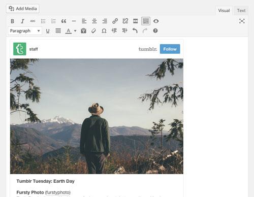 Novedades de WordPress 4.2: Incrsutación de archivos desde Tumblr y Kickstarter