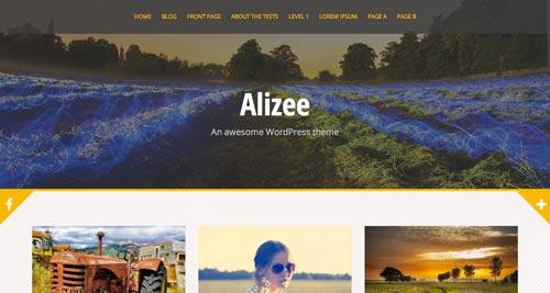 Temas WordPress gratuitos con efecto parallax: Alizee