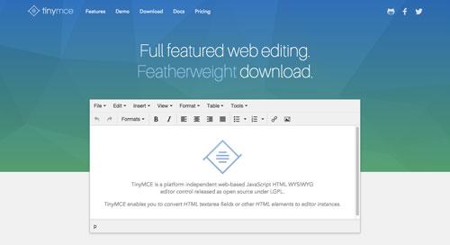 herramientas-incluir-editor-wysiwyg-TinyMCE