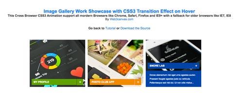 librerias-css-efectos-hover-imagenes-otros-elementos-CSS3TransitionEffectOnHover
