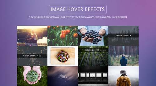 librerias-css-efectos-hover-imagenes-otros-elementos-ImageHoverEffects