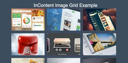 librerias-css-efectos-hover-imagenes-otros-elementos-InContentImageGrid