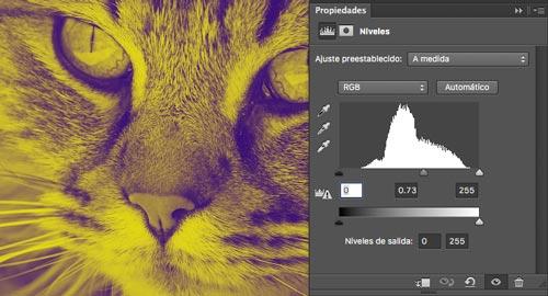 tutorial-de-photoshop-convertir-fotografia-duotono-niveles