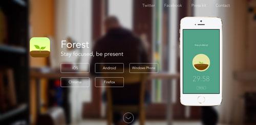 ejemplos-sitios-web-uso-efecto-desenfoque-Forest